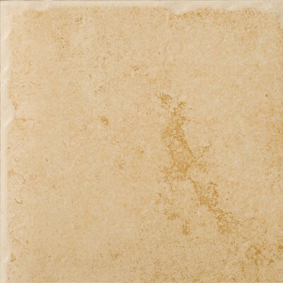 Genoa 7 x 7 Porcelain Field Tile in Albergo