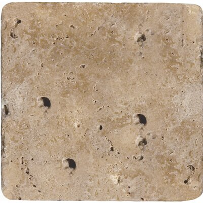 Travertine 8 x 8 Field Tile in Ancient Tumbled Mocha