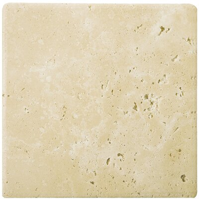 Travertine 8 x 8 Field Tile in Ancient Tumbled Beige