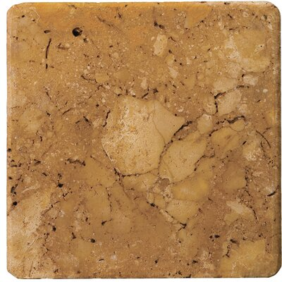 6 x 6 Travertine Field Tile in Oro