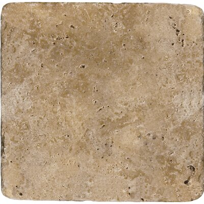 Travertine 12 x 12 Field Tile in Ancient Tumbled Mocha