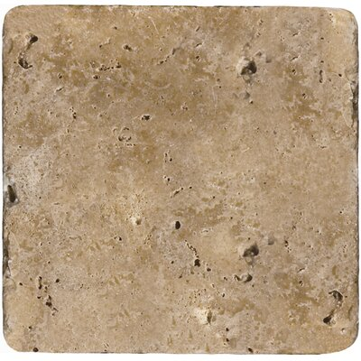 Travertine 6 x 6 Tile in Ancient Tumbled Mocha