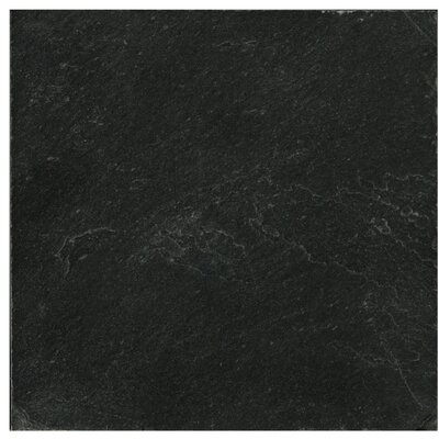 Slate 12 x 12 Field Tile in Midnight Black