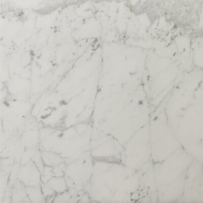 "Natural Stone 18"" x 18"" Honed Marble Field Tile in Bianco Gioia"