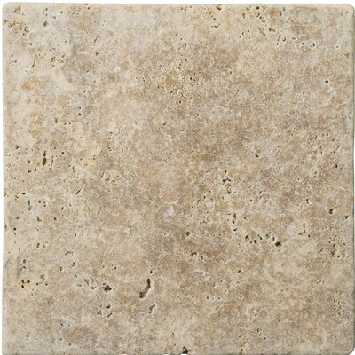 Travertine 4 x 4 Unfilled and Tumbled Tile in Walnut