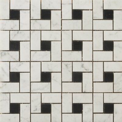 Natural Stone Random Sized Honed Marble Pinwheel Mosaic in Bianco Gioia/Black