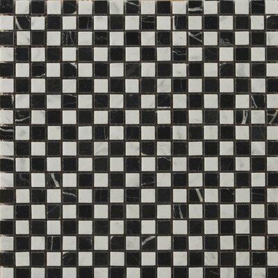 "Natural Stone 1/2"" x 1/2"" Marble Polished Mosaic in Bianco Gioia/Black"