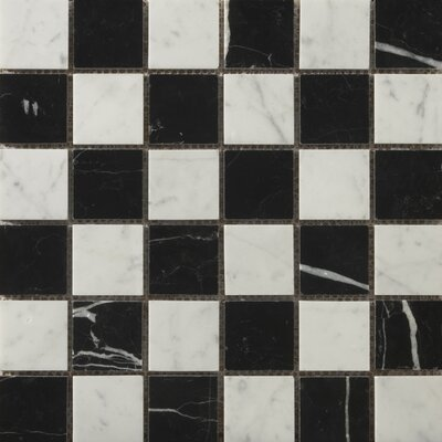 "Natural Stone 2"" x 2"" Marble Polished Mosaic in Bianco Gioia/Black"