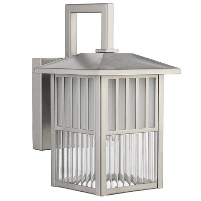 Frisco 1-Light Outdoor Wall Lantern Finish: Painted Nickel
