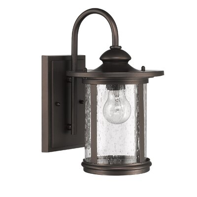 Cole 1-Light Outdoor Wall Lantern Size: 16 H x 9 W x 11 D