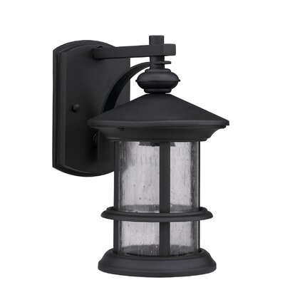 Ashley Superiora 1-Light Outdoor Wall Lantern Finish: Black
