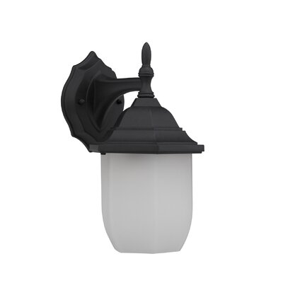 Nephalia Lavish 1-Light Outdoor Wall Lantern Finish: Black