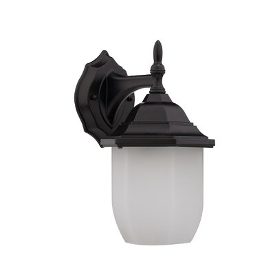 Nephalia Lavish 1-Light Outdoor Wall Lantern Finish: Oil Rubbed Bronze