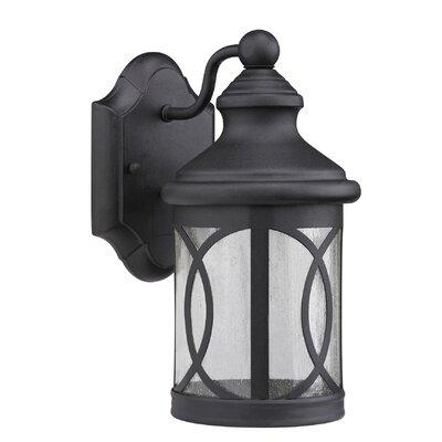 Romania Allura 1-Light Outdoor Wall Lantern Finish: Black