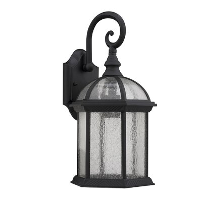Havana Divine 1-Light Outdoor Wall Lantern Finish: Black