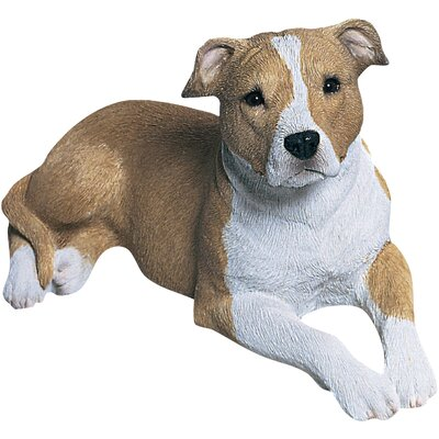 Mid Size Sandicast Pit Bull Terrier Sculpture in Fawn/White