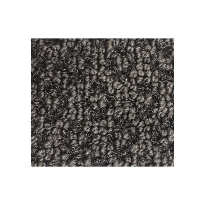 CM Viper 8900 Luxury Entrance Doormat Mat Size: 4 x 6