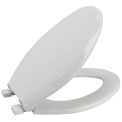 Slow-Close Elongated Toilet Seat Finish: White