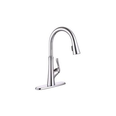 Concealed Single Handle Pull Down Kitchen Faucet Finish: Chrome