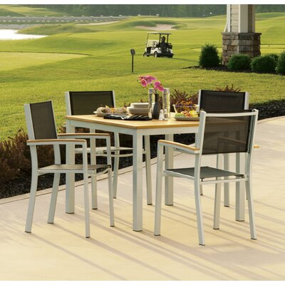 Farmington 5 Piece Dining Set with Sling Back Chairs Color: Black