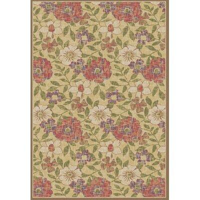 Winchester Larana Teastain Area Rug Rug Size: 33 x 47