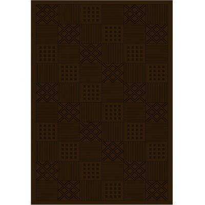 Cheshire Modelama Chocolate Rug Rug Size: 4 x 6