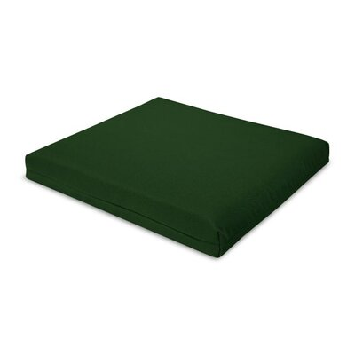 Outdoor Sunbrella Barstool Cushion Fabric: Forest Green