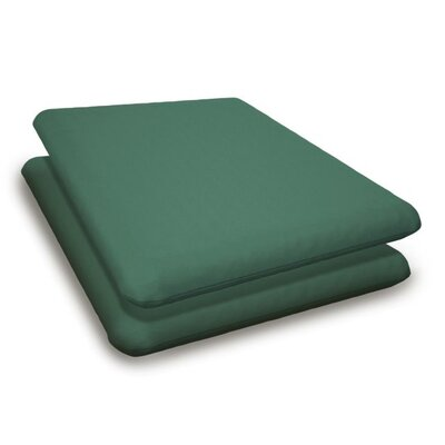 Outdoor Sunbrella Adirondack Chair Cushion Fabric: Spa