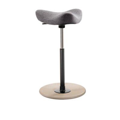Adjustable Height Bar Stool Finish: Gray