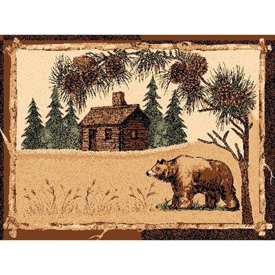 Cabin and Bear Rug