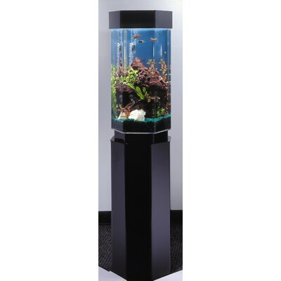 Buy Low Price Midwest Tropical Fountain Aquascape 15 Gallon Hexagon Aquarium Fish Aquarium Mart