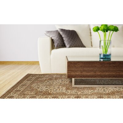 Triumph White Area Rug Rug Size: Runner 22 x 76
