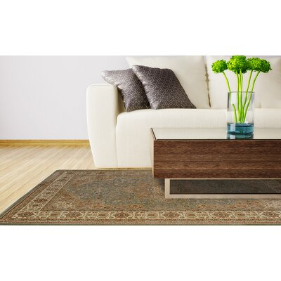 Triumph Green Area Rug Rug Size: Runner 22 x 76