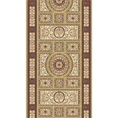 Regency Area Rug Rug Size: Runner 27 x 76