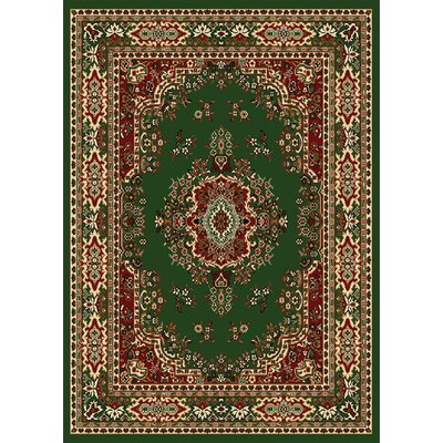 Premium Green Area Rug Rug Size: Rectangle 52 x 74