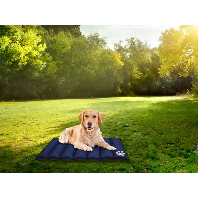 Comfy Pooch Reversible Travel Mat Color: Blue, Size: Small (35 L x 28 W)