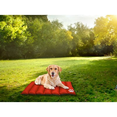 Comfy Pooch Reversible Travel Mat Color: Orange, Size: Small (35 L x 28 W)