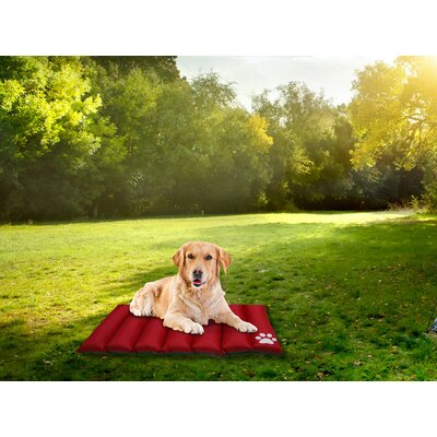Comfy Pooch Reversible Travel Mat Color: Red, Size: Small (35 L x 28 W)