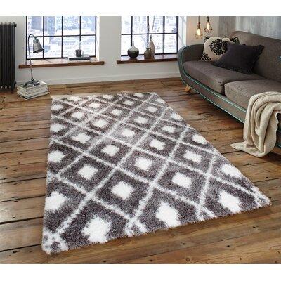 Abarca Gray/Ivory Shag Area Rug Rug Size: 28 x 311