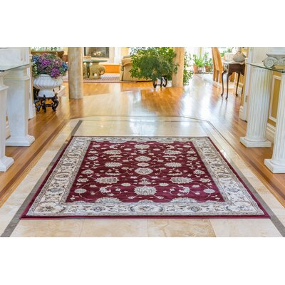Triumph Red Area Rug Rug Size: Runner 22 x 76