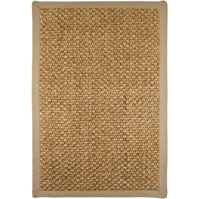 Cabo Brown Area Rug Rug Size: Rectangle 18 x 28