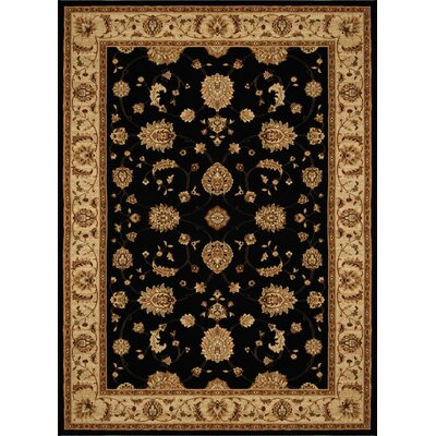Triumph Black Floral Area Rug Rug Size: Rectangle 78 x 102