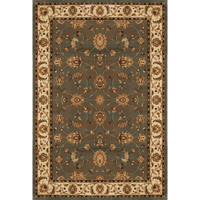 Triumph Gray Area Rug Rug Size: Rectangle 39 x 52