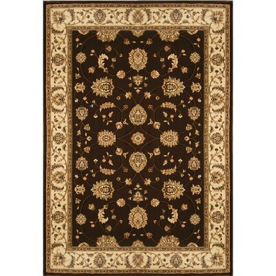 Triumph Brown Area Rug Rug Size: Oval 27 x 43