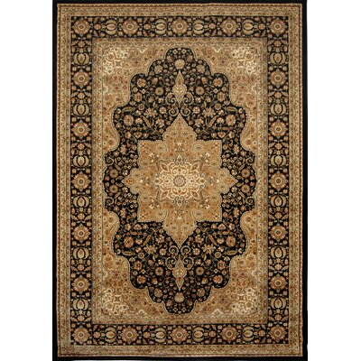 Triumph Woven Black Oriental Rug Rug Size: Rectangle 52 x 76