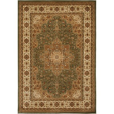 Triumph Green Area Rug Rug Size: Rectangle 78 x 102