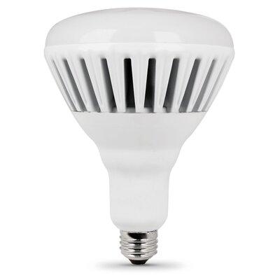 36W 120-Volt (3000K) Light Bulb Image