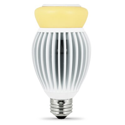 Frosted E26/Medium LED Light Bulb Wattage: 22W, Bulb Temperature: 5000K