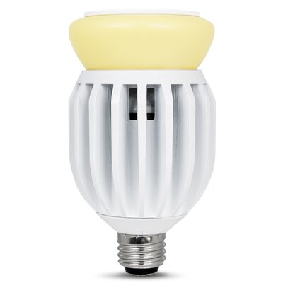 Frosted E26/Medium LED Light Bulb Wattage: 32W, Bulb Temperature: 5000K