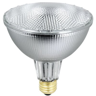 35W 120-Volt Halogen Light Bulb